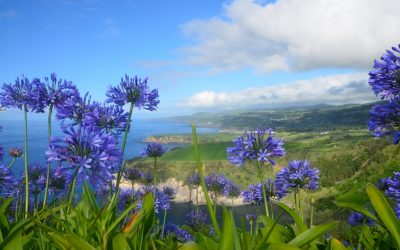 Destination Suggestions – The Azores